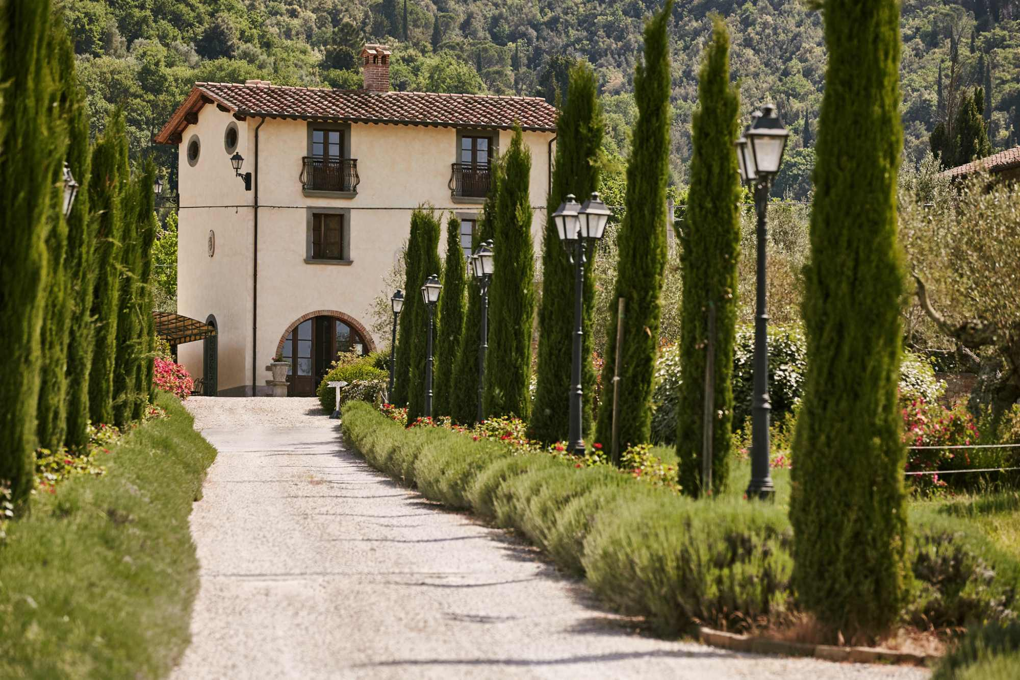 Wine Wedding Italy Package