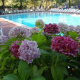holiday villa rentals. panorama-bello-Swimming pool 1