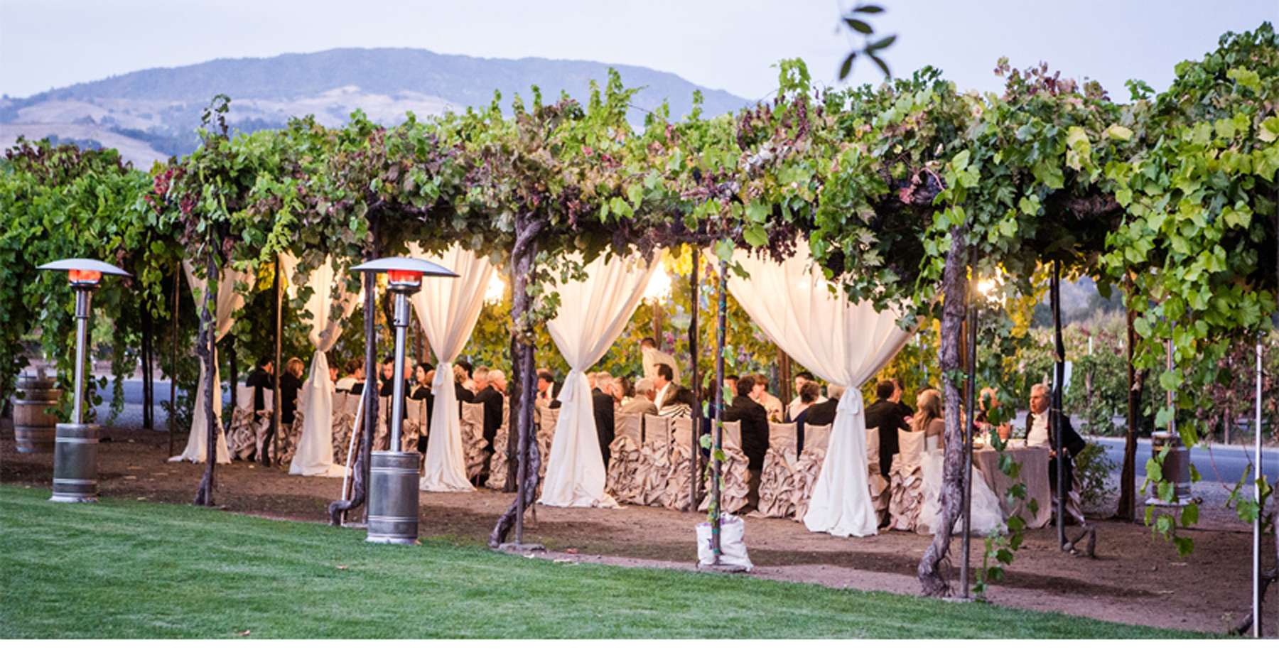 Italian Vineyard Wedding 1